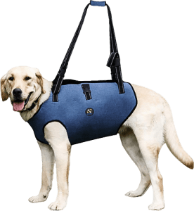 Coodeo Dog Lift Harness Suitable for Week Joints & Arthritis