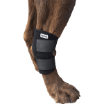 Best Dog Hock Brace Reviews