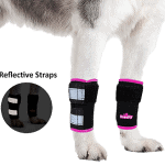 Dog Front Leg Braces Carpal Support