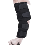 Dog Hock Brace Rear Leg Joint