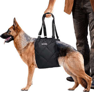 Frenz Dog Lift Harness for Knee, Joints and ACL Injury