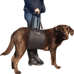 Best Dog Lift Harness - You Can Buy in 2021
