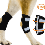 Best Dog Leg Brace Reviews and Benefits